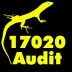 17020 Audit